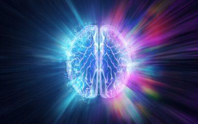 Les effets de l'escape game sur votre cerveau